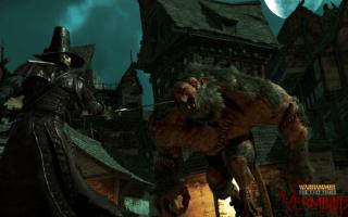 Kroki, aby naprawić Warhammer: End Times — błędy Vermintide, awarie, zawiesza się, problemy z FPS